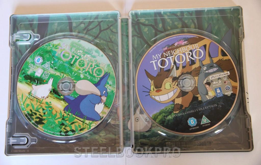 Totoro8