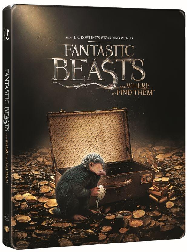 Fantastic Beast steelbook