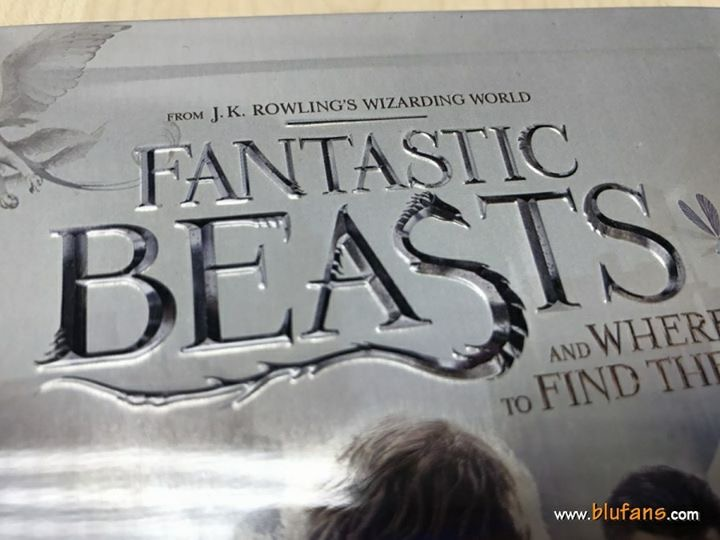 Fantastic Beasts steelbook blufans 4