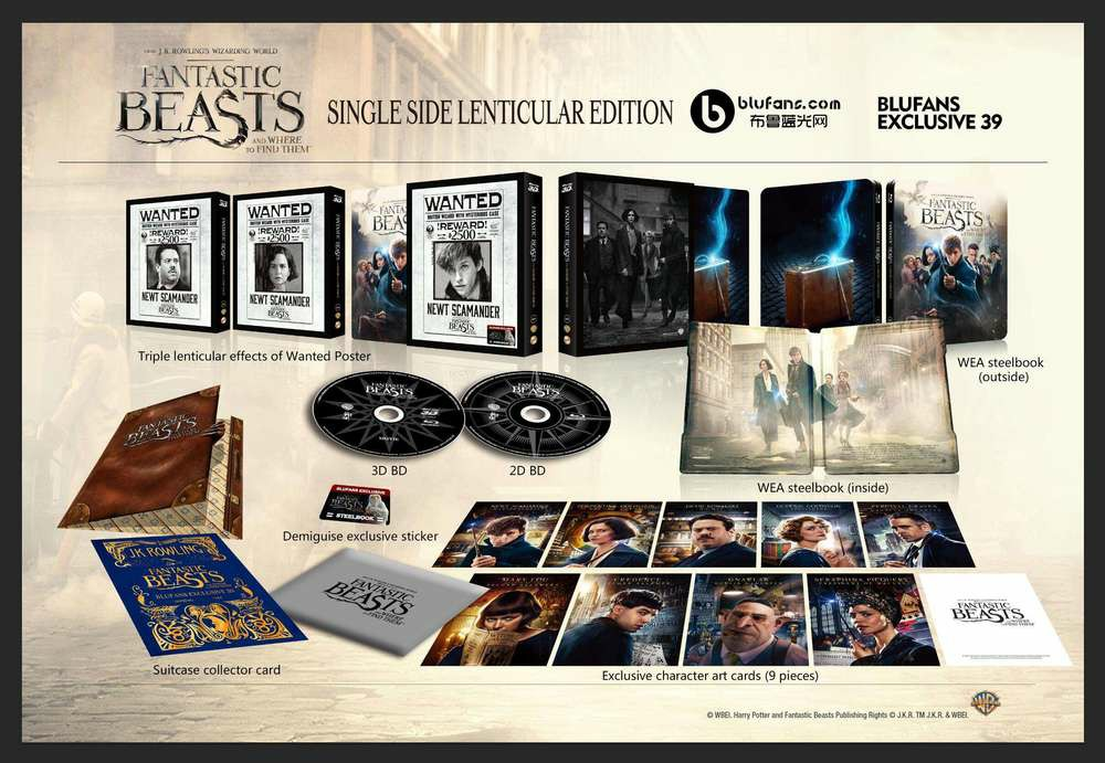 Fantastic Beasts steelbook blufans 5
