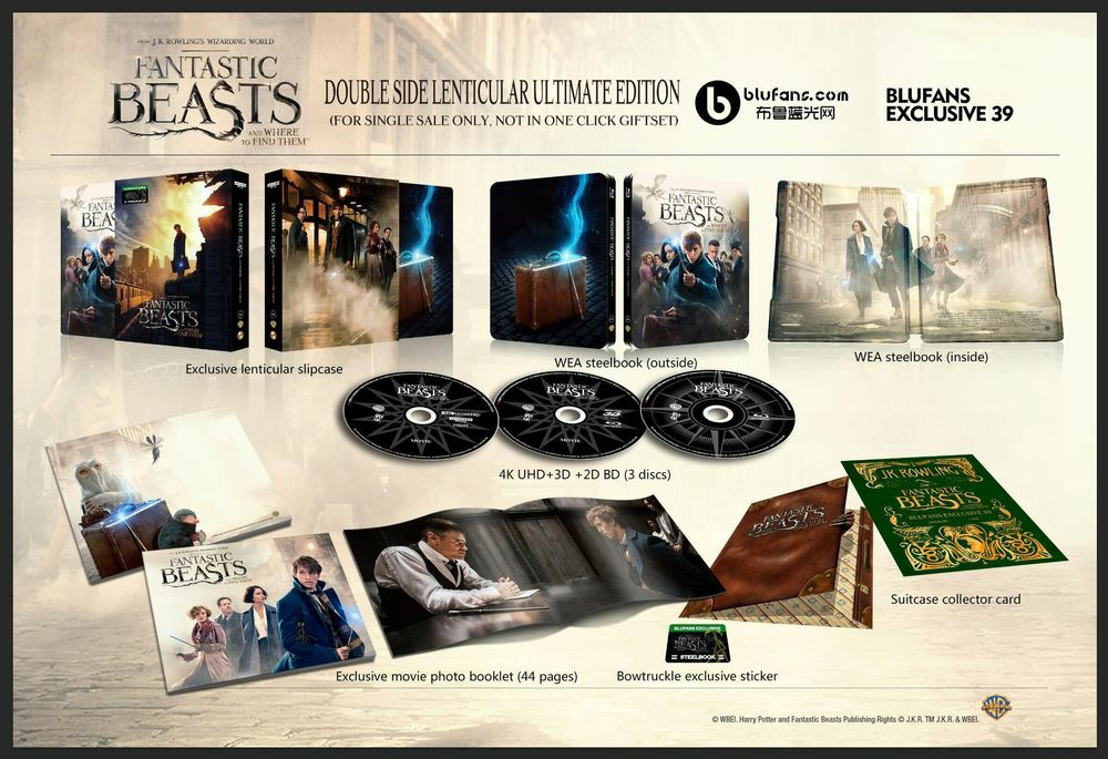 Fantastic Beasts steelbook blufans 6