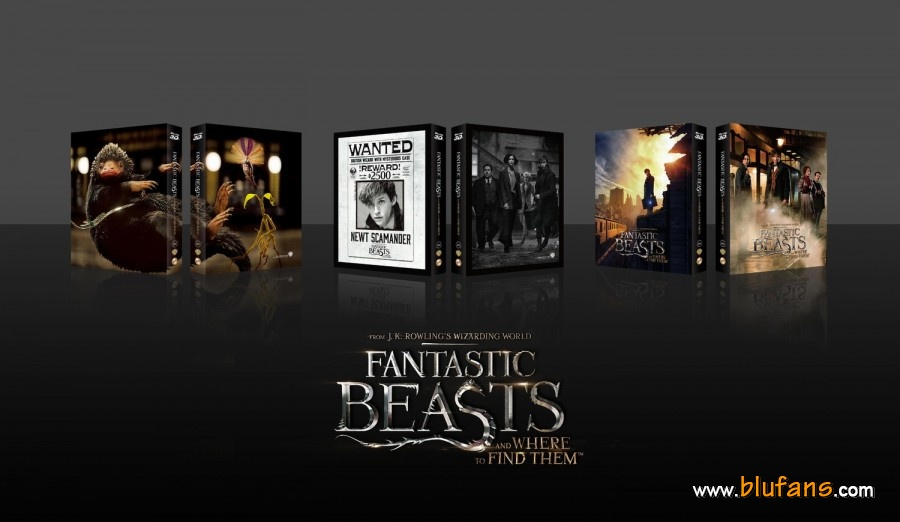 Fantastics Beasts steelbook blufans 3