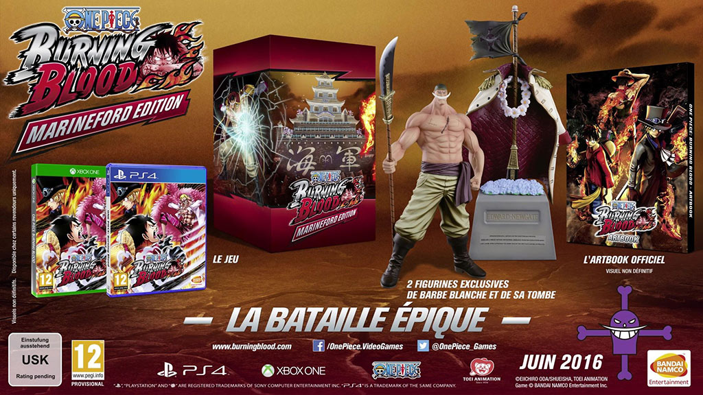 édition-collector-pour-One-Piece-Burning-Blood
