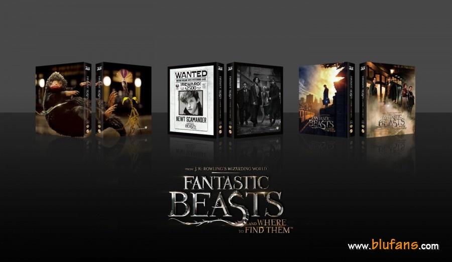 Fantastics Beasts steelbook blufans 3