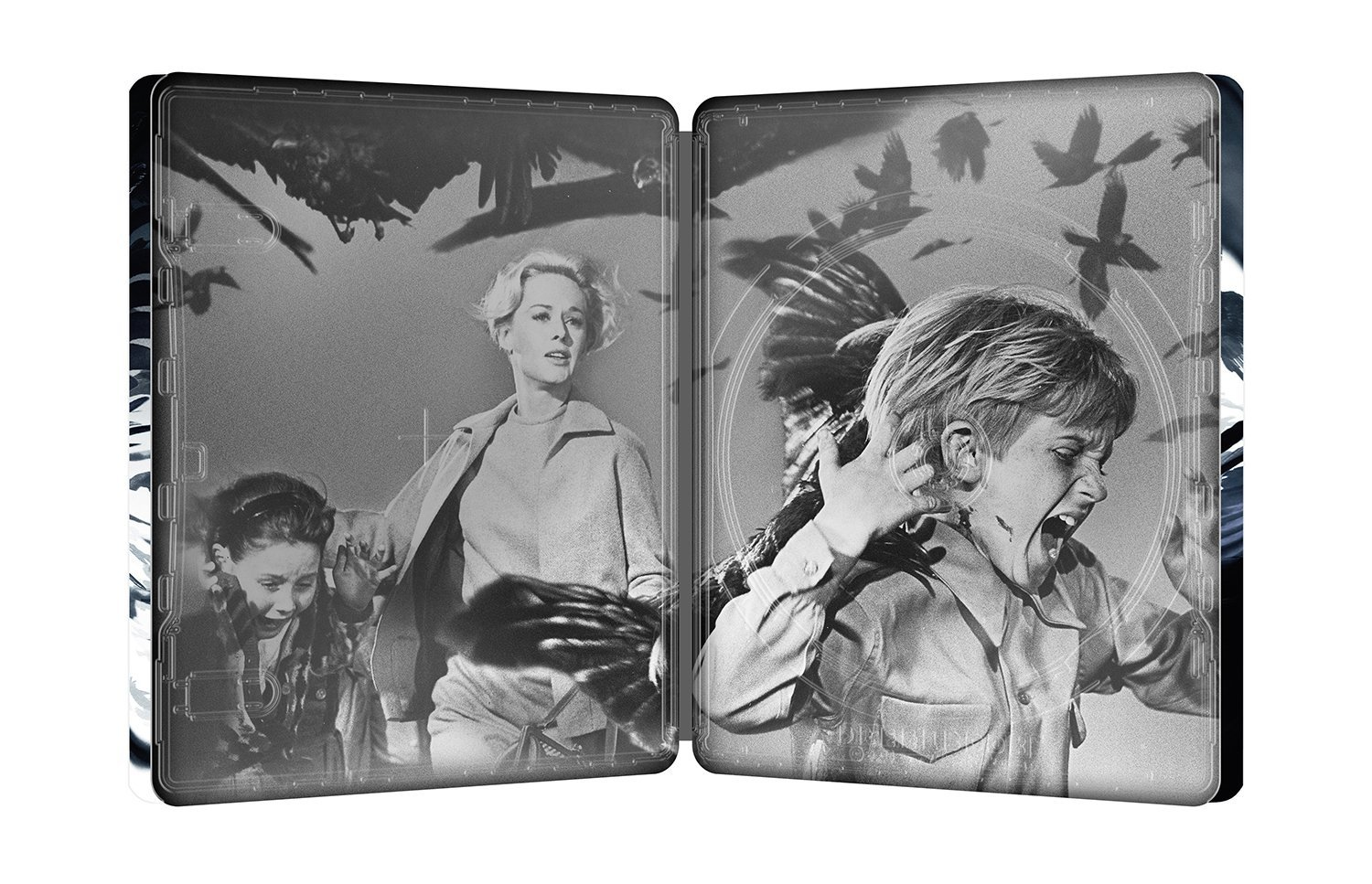 The Birds steelbook 3